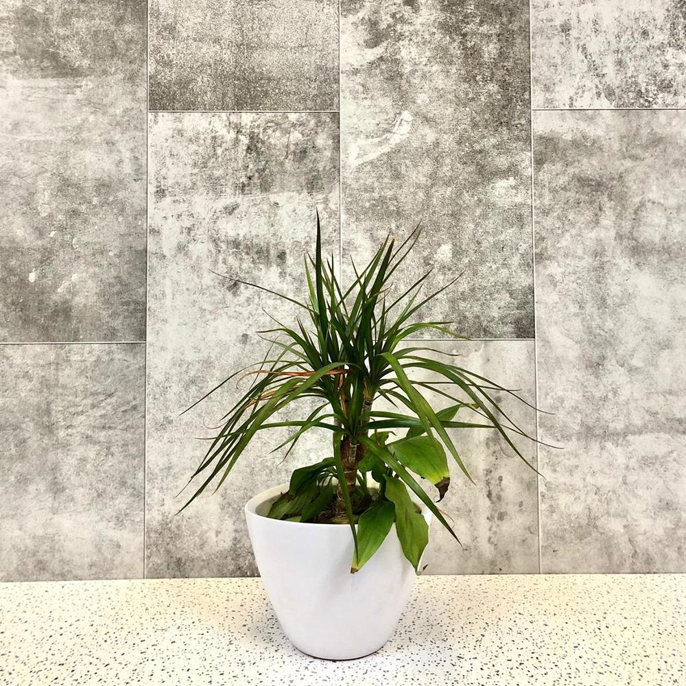 Montebello-Shower-Panel-4-Pack
